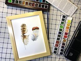 预告:免费水彩手绘丨直播体验课 Vol.9 《轻如羽毛》