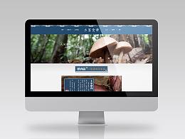 网页|电子商务|淘宝首页设计