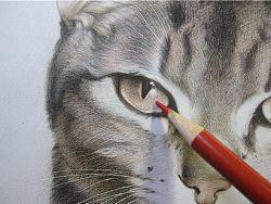 纸上彩铅--《猫爸与猫仔》纸张测试 随录