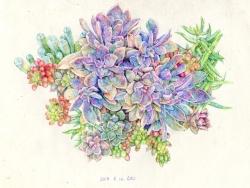 一些彩铅、圆珠笔和水彩的手绘 by Hosanna_914