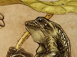 陈年老图之:青蛙先生
