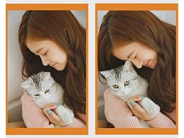 ノラ猫と少女
