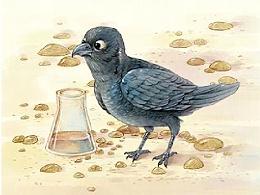乌鸦喝水的故事