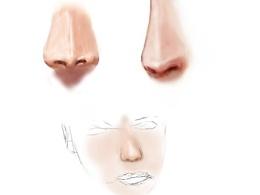 nose鼻子-人体部位手绘练习手绘板练习