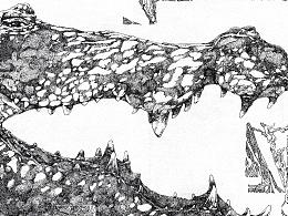 幻想之中系列  鳄鱼