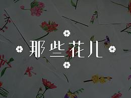 插画—《那些花儿》系列插画习作