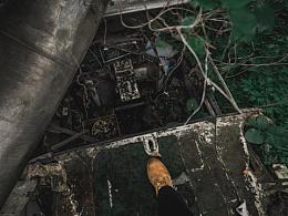 雨林废弃飞机探险urbex
