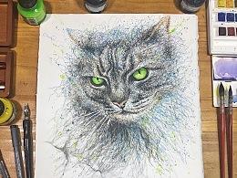 飞线涂鸦《猫》