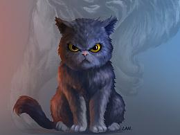 一只猫的内心