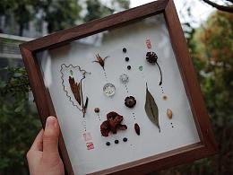 朴度/二十四节气物候装饰画/春分/人间草木手作