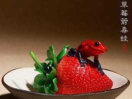 究極model-草莓箭毒蛙