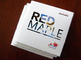 加拿大 冰川水 折页 画册