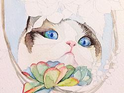 猫咪玛丽苏步骤图分享
