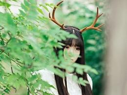 【客片】-林中漫步-