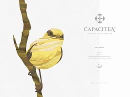 Capacitea容涵 在英国的中国茶品牌 整体视觉