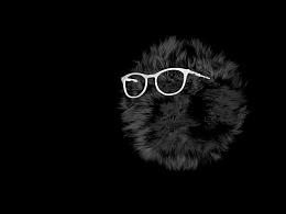 炫酷黑毛球|交作业