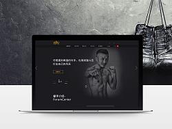 拳击综合网站