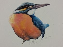 我的一些鸟类水彩作品