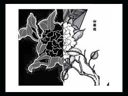 手绘插画-植物日记(花生花)[系列]