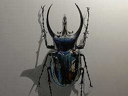 彩铅插画—甲壳虫