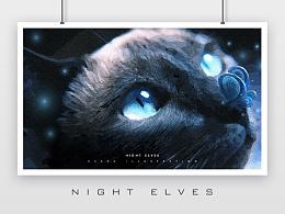 NIGHT ELVES | 暗夜精灵