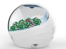 植物生态空气净化器设计,绿色生活新风尚
