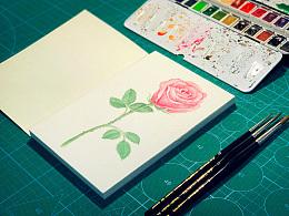 水彩习作·玫瑰