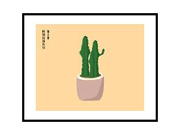 仙人掌 植物插画