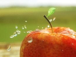 【C4D-oc渲染】红苹果