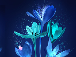 临摹手绘 夜间盛放的花朵 by happycherish