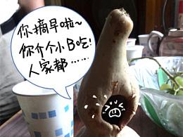 2014漫画随笔(三)