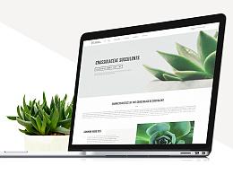 一组小清新的多肉植物网站首页承接页