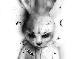 愤怒的兔子/AngryRabbit