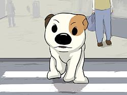 《巷子里的流浪狗》