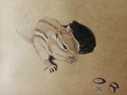 《萌哒哒3D鼠》