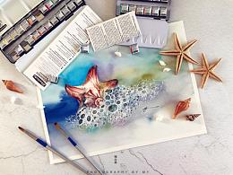 小花的水彩~海润万物之灵~