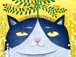 动物封面插画系列1