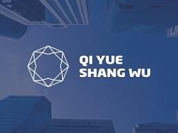 商务公司 高端VI logo设计