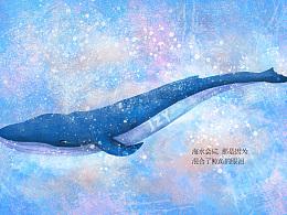 鲸鱼的眼泪