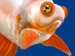 一点都不走心的金鱼