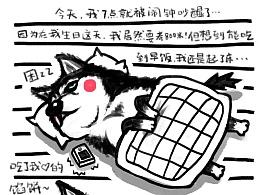 """11月11日—""""单身""""汪日记"""