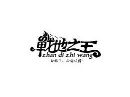 戊辰设计【战地之王】