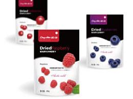 岭珍野生蓝莓包装设计
