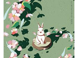 兔子与花系列 | 色卡