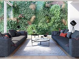 植物墙渲染