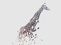 一旦碎了就很难捡回来-长颈鹿