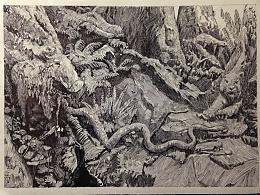 《山里的神明》插画、最后附正在画的圆珠笔画。