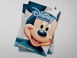 迪士尼文化宣传册