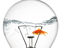 鱼遨游于灯泡