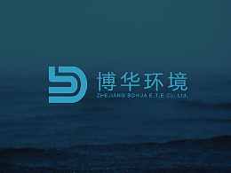 浙江博华环境品牌logo设计